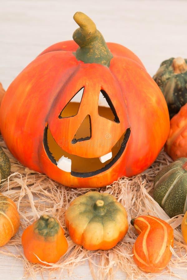 Оранжевая тыква хеллоуина и много малых тыкв стоковое фото