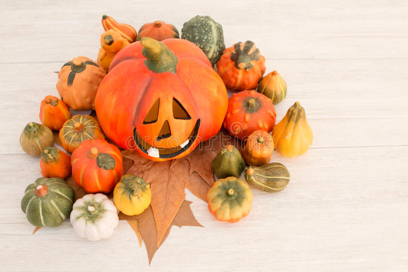 Оранжевая тыква хеллоуина и много малых тыкв стоковая фотография rf