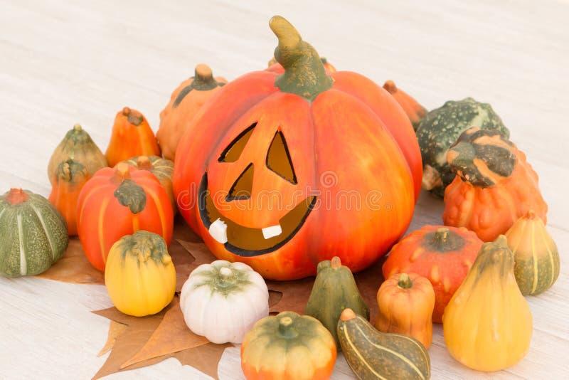 Оранжевая тыква хеллоуина и много малых тыкв стоковые изображения