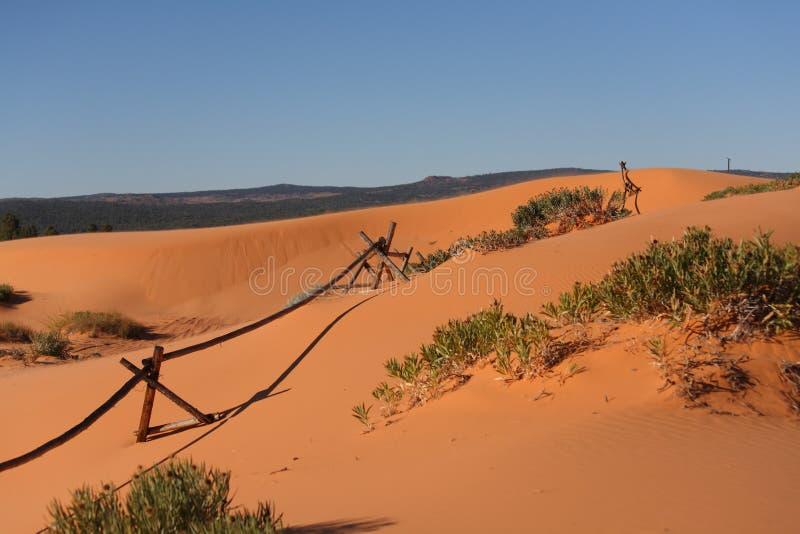 Оранжевое зарево песка стоковая фотография rf