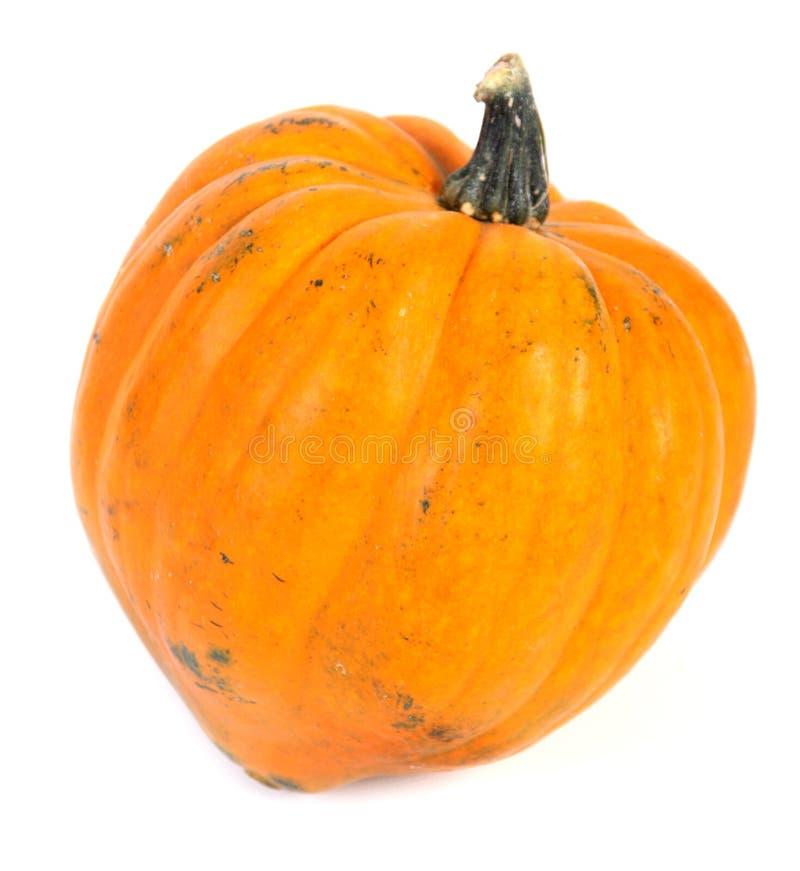 Оранжевое сквош стоковая фотография rf