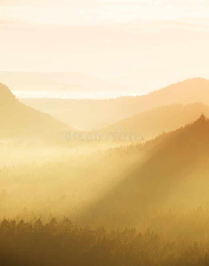 Оранжевое туманное утро, взгляд над утесом к глубокой долине вполне ландшафта весны светлого тумана мечтательного внутри рассвет стоковые изображения