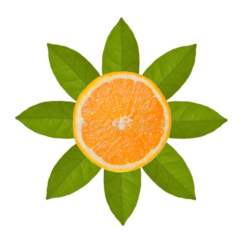 Download Оранжевые лист куска и апельсина в изображении солнца изолированные на задней части белизны Стоковое Изображение - изображение насчитывающей еда, сочно: 40591293