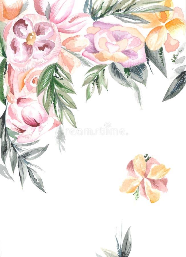 Оранжевые и розовые цветки иллюстрация вектора