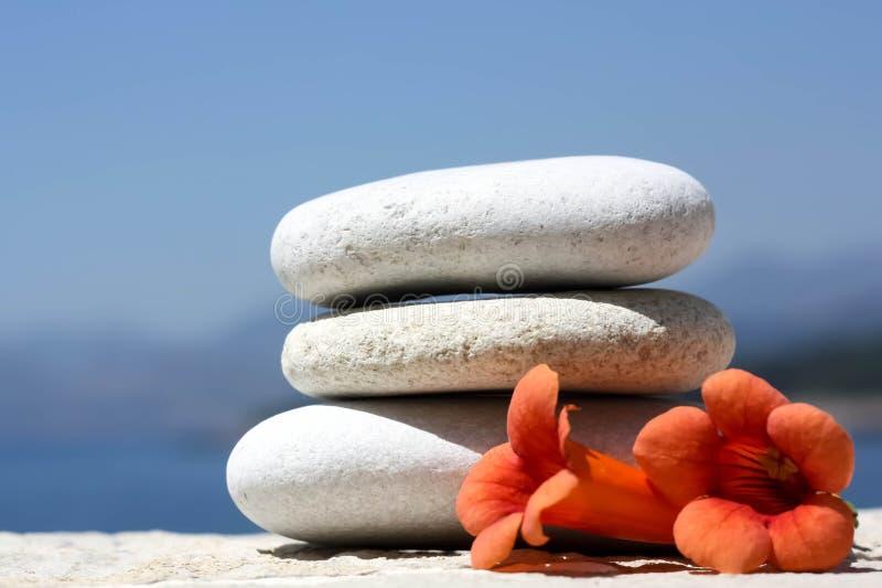 Оранжевые цветки и камушки стоковые изображения