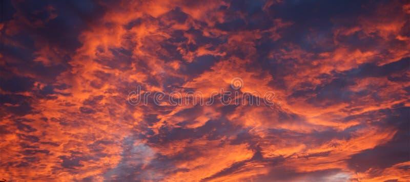 Оранжевый восход солнца Skyscape altocumulus australites стоковое изображение