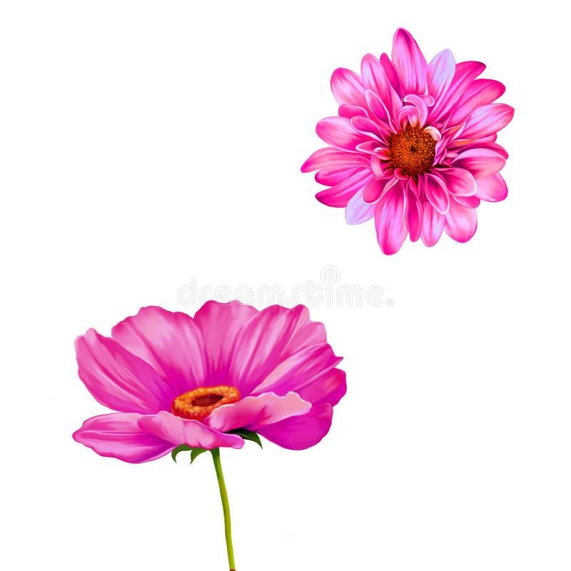 Оранжевый мак, цветок mona lisa иллюстрация штока