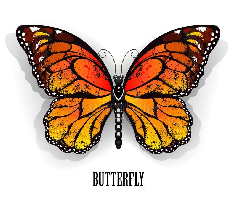 Оранжевый монарх бабочки иллюстрация штока