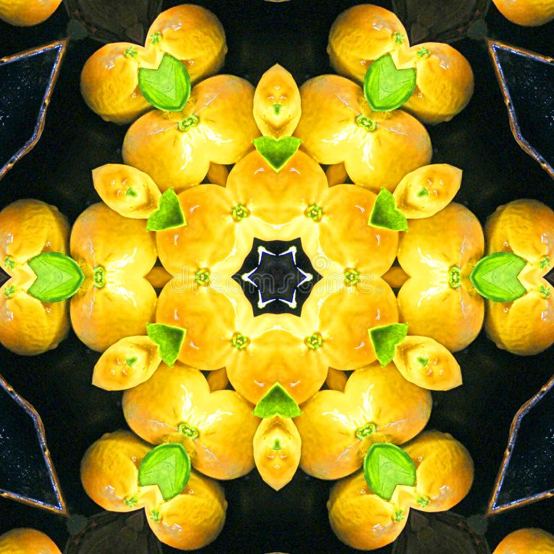 Оранжевый плодоовощ аранжированный в дизайне круга калейдоскопа, оранжевый круг ест предпосылку еды для знамени иллюстрация вектора