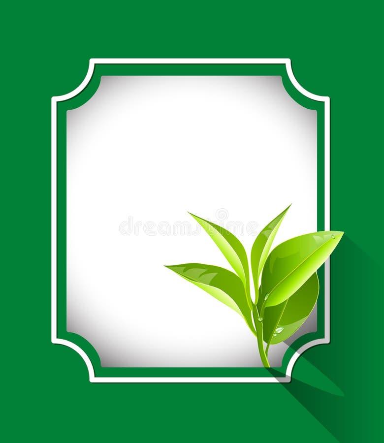 Органическая рамка leavess чая иллюстрация вектора