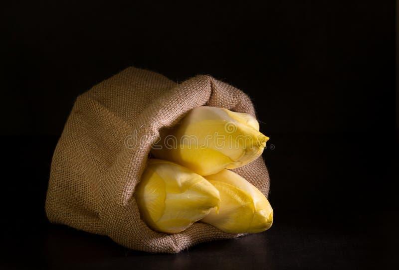 Органические бельгийские эндивии стоковое фото