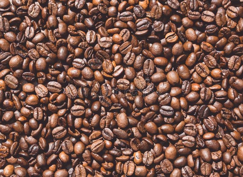 Органические зажаренные в духовке кофейные зерна Предпосылка и космос для текста стоковая фотография