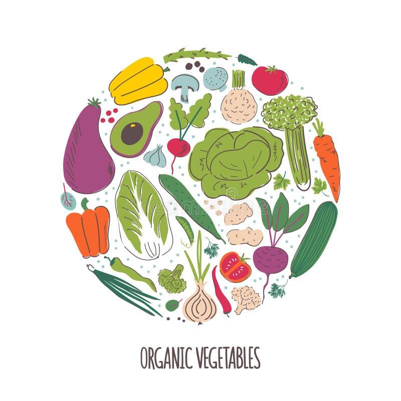 Органические овощи вручают вычерченную иллюстрацию вектора цвета бесплатная иллюстрация