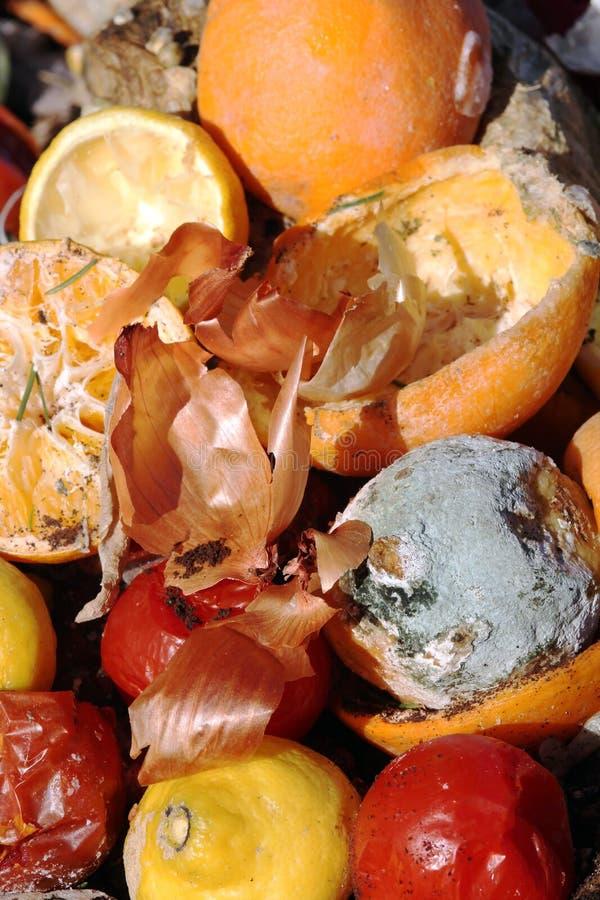 органические отходы стоковое изображение rf