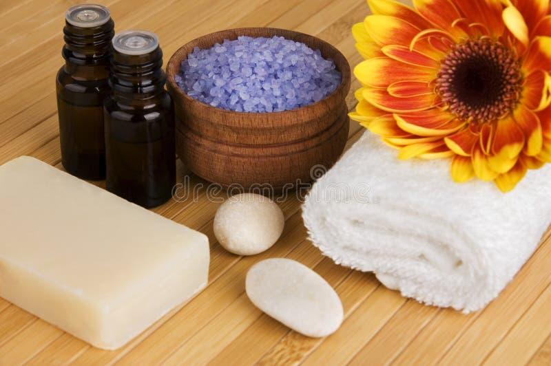 Органические продукты заботы тела стоковые изображения