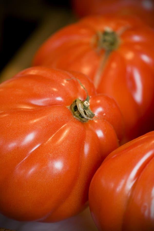 органические томаты стоковая фотография