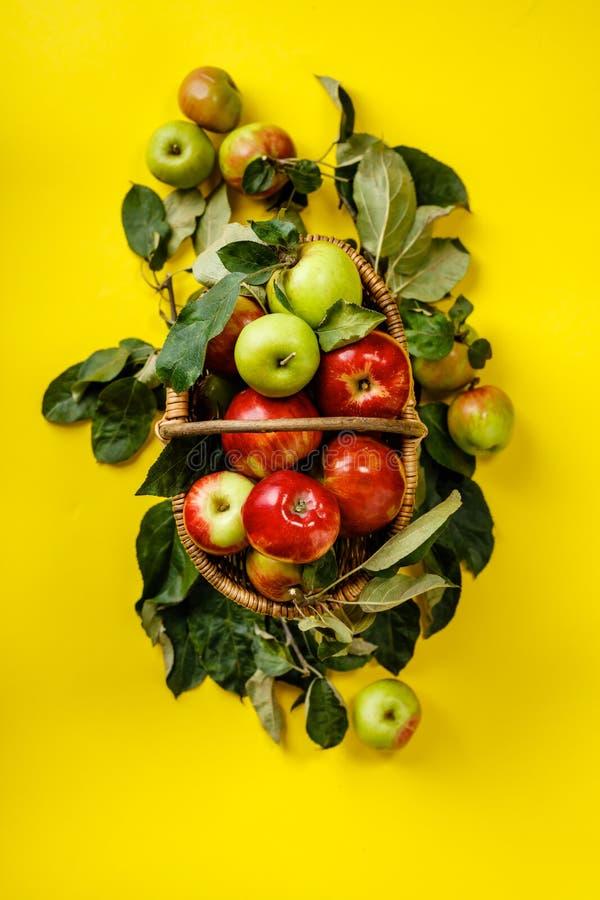 Органические яблоки в корзине на желтом фоне стоковые изображения rf