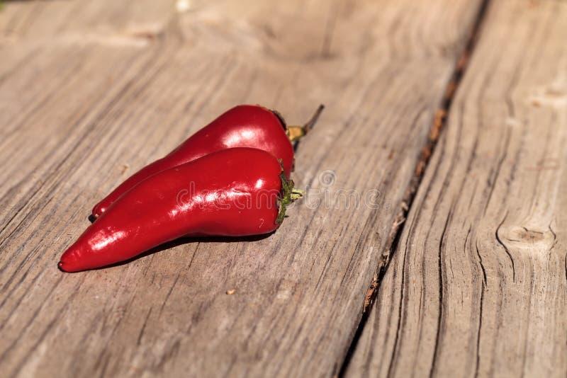 Органический накаленный докрасна перец jalapeno стоковые изображения