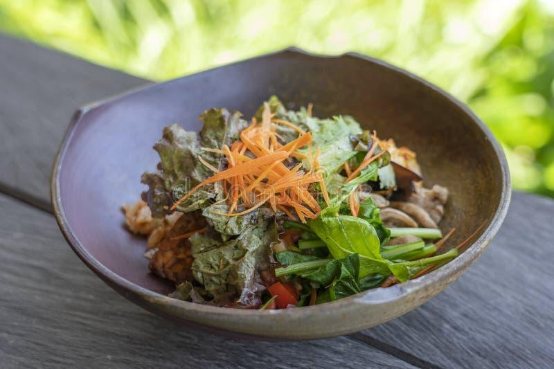 Органический салат от зеленого риса карри, баклажана, kimchi, braised зеленых цветов, гриба, бекона tempeh, тофу послужен в шаре  стоковые изображения rf