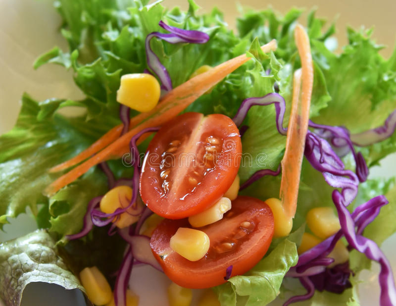 Органический салат овощей овощей стоковое изображение rf