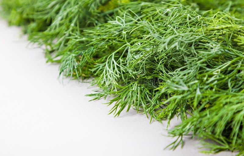 Download Органический свежий укроп стоковое фото. изображение насчитывающей vegetarian - 41658062