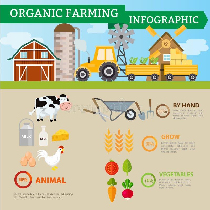 Органическое сельское хозяйство и промышленная еда, овощи, плодоовощи, mik, egg бесплатная иллюстрация