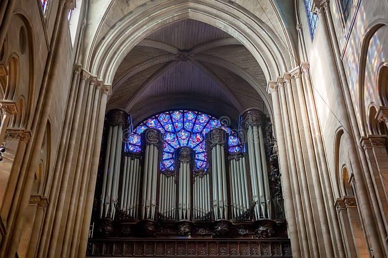 Орган и запад подняли окно на собор Нотр-Дам стоковая фотография rf