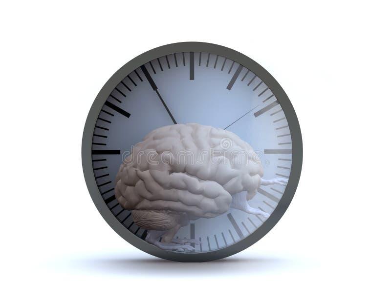 Орган человеческого мозга с оружиями и ноги бежать в хомяке катят бесплатная иллюстрация