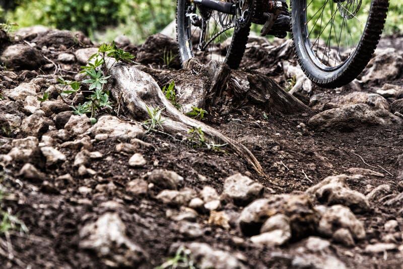 Орегон 2013 Enduro стоковое изображение rf