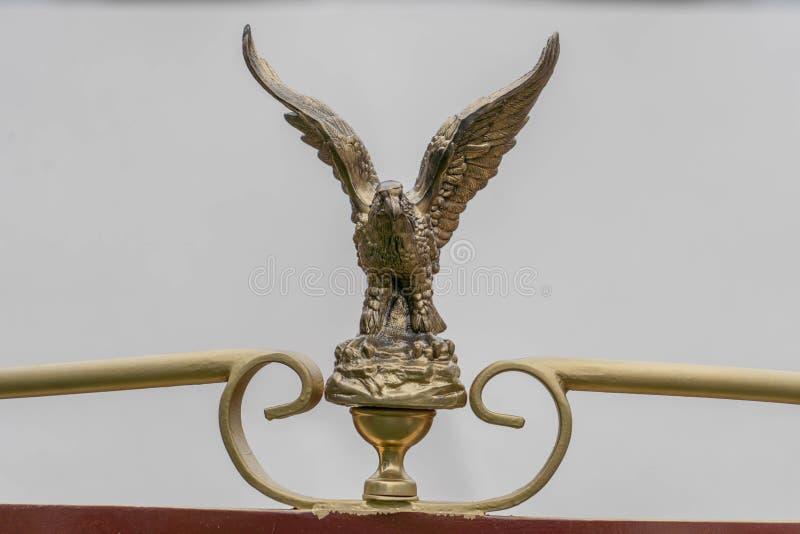 Орел в машине стоковая фотография