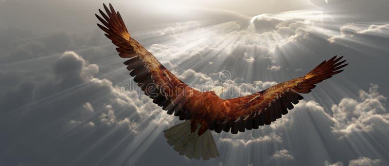 Орел в полете над облаками иллюстрация вектора
