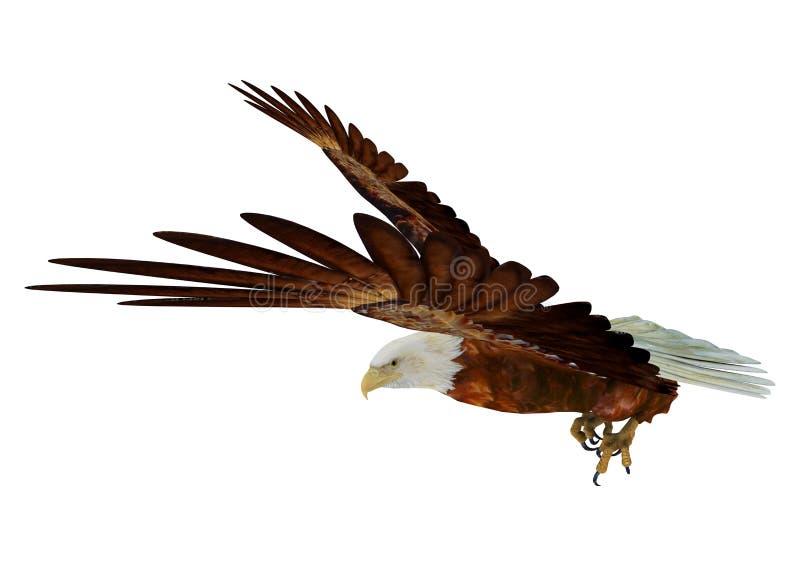 Орел иллюстрация штока