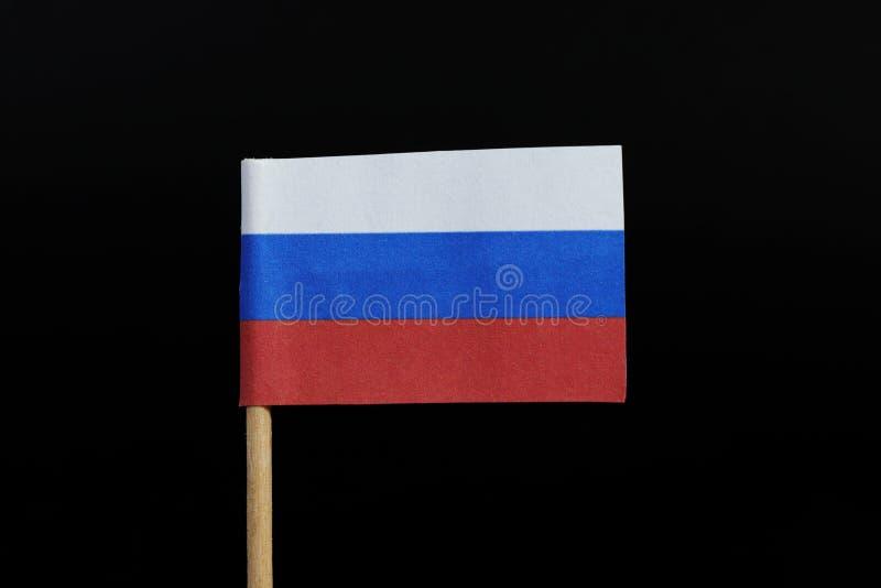 Оригинал и национальный флаг России на зубочистке на черной предпосылке Горизонтальное tricolour белого, темно-синего и красного стоковые фотографии rf