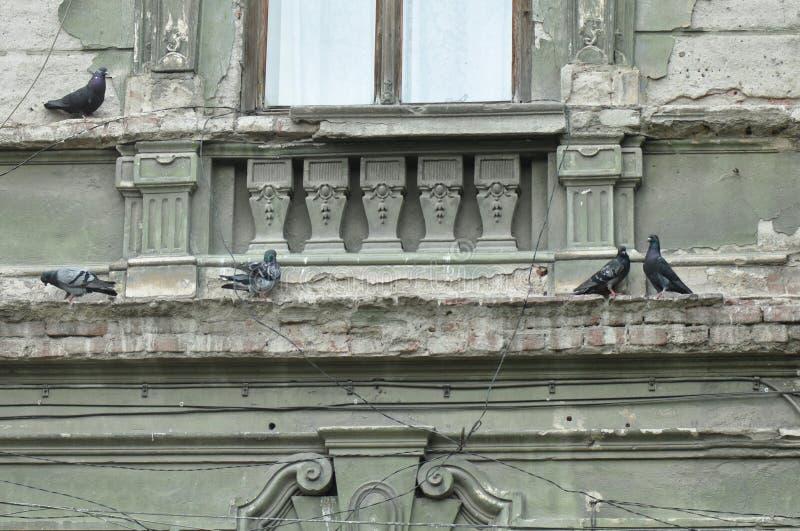 Орнаменты от старого дома стоковая фотография rf