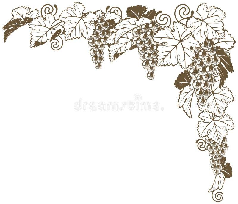 Орнамент виноградной лозы угловой иллюстрация вектора