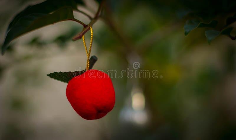 Орнамент рождества на лист стоковые фотографии rf
