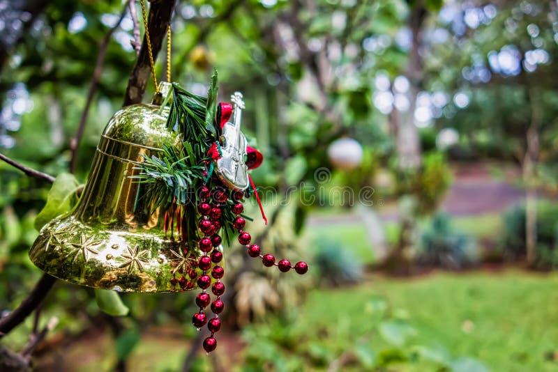 Орнамент рождества с колоколом и гитара на дереве в саде стоковое изображение rf