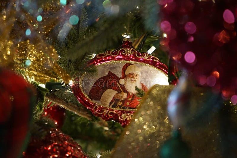 Орнамент Санты в рождественской елке стоковое фото