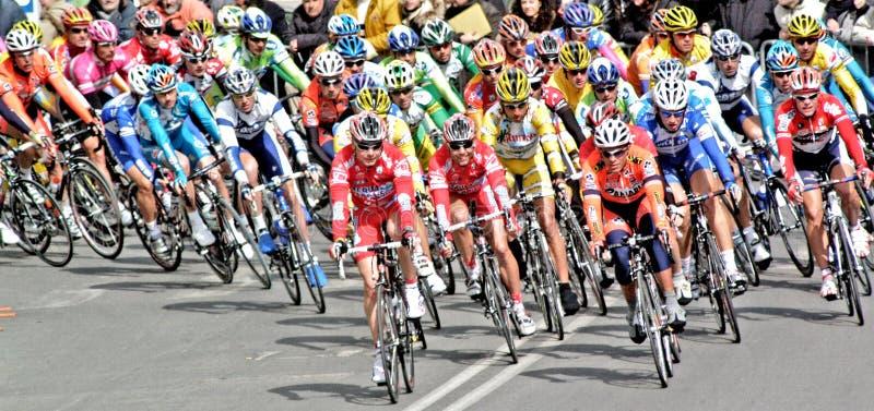 дорога гонки пущи велосипедиста bike стоковые изображения rf