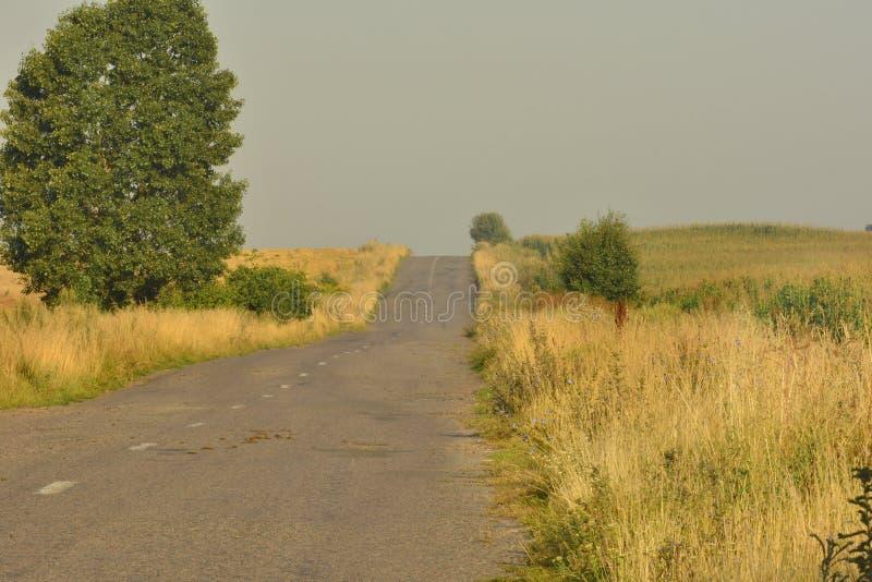дорога сельская стоковое фото