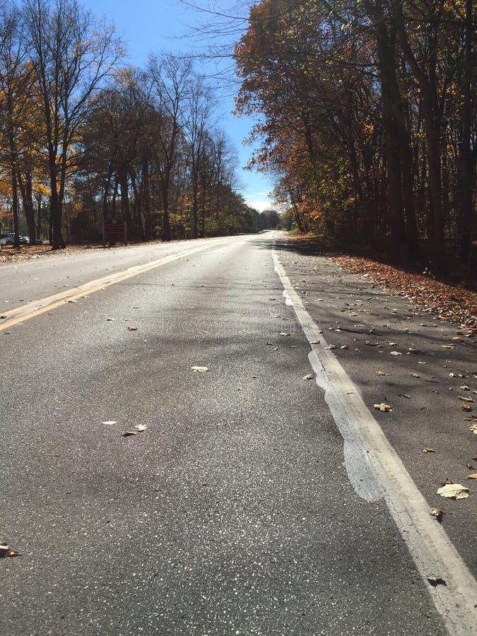 дороги стоковое изображение rf