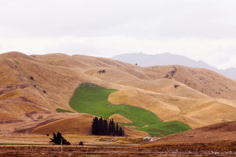 Орошенные изменением климата зеленые холмы засухи поля стоковые фото