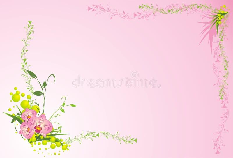 орхидеи травы состава карточки иллюстрация штока
