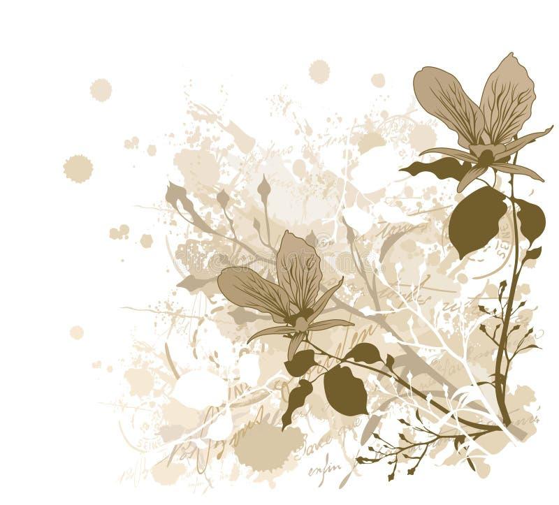 орхидеи иллюстрация штока