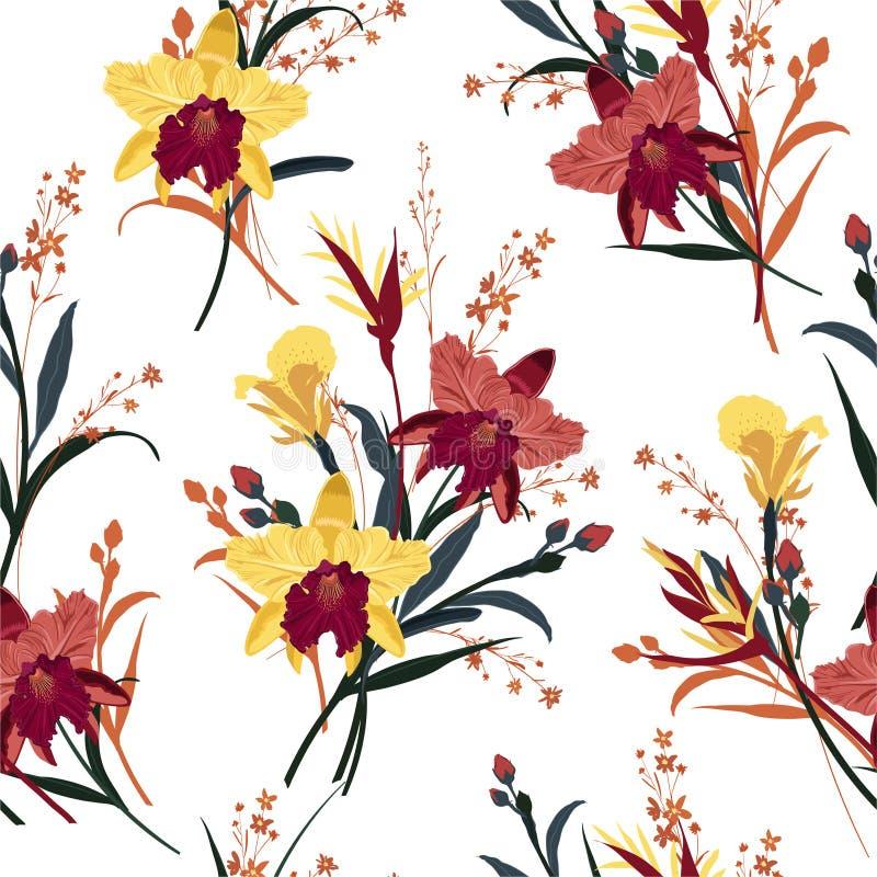 Орхидея безшовного вектора зацветая, флористическая предпосылка картины лета в саде Дизайн для обоев, предпосылок интернет-страни иллюстрация штока