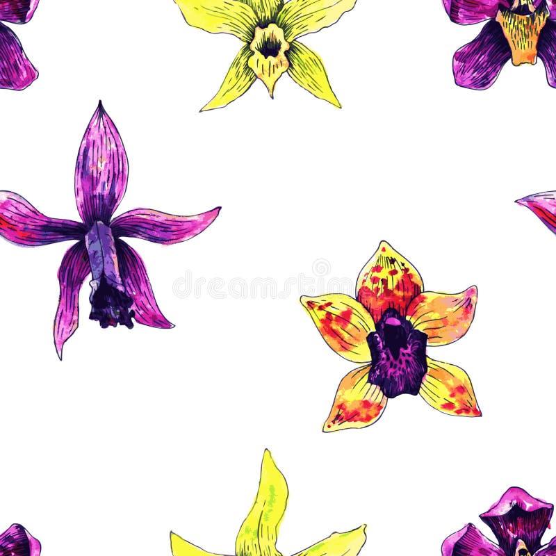 орхидеи делают по образцу безшовное иллюстрация штока