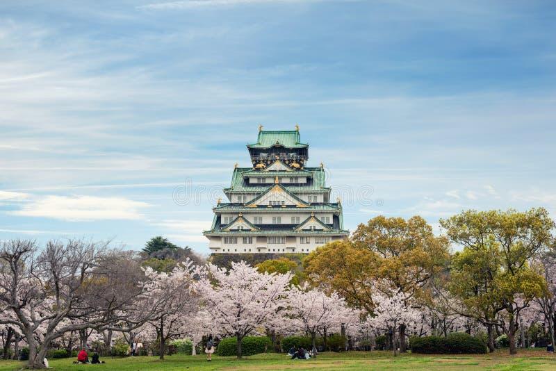 Осака, Япония на замке Осака во время сезона вишневого цвета весны стоковые фотографии rf
