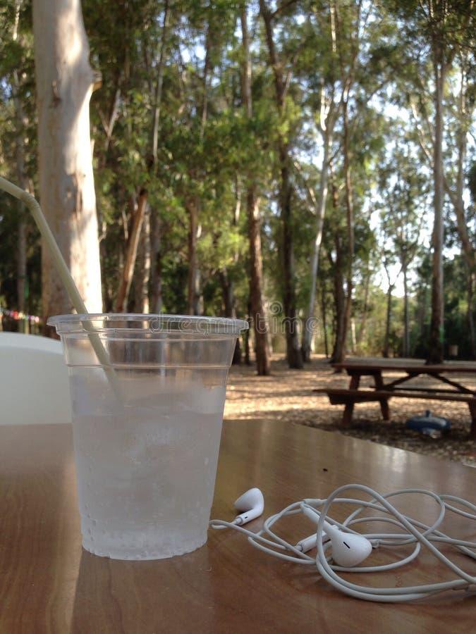 Освежающий напиток на парке стоковые фотографии rf