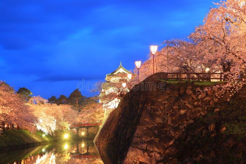 Осветите вверх замка и вишневых цветов Hirosaki стоковые фотографии rf