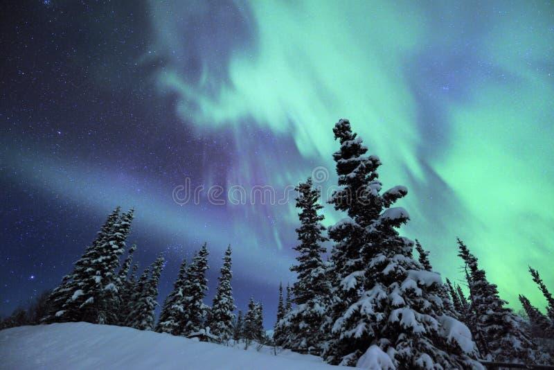 освещает северную стоковая фотография